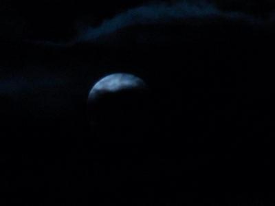 十六夜2010_09_23-01.jpg