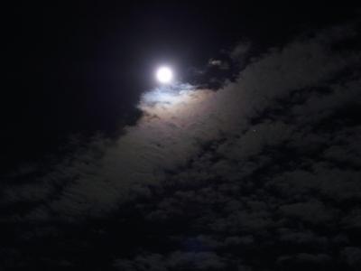 十六夜2010_09_23-08.jpg