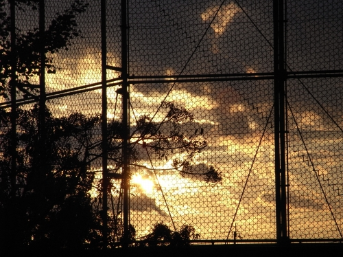 夕空2010_09_28-01.jpg