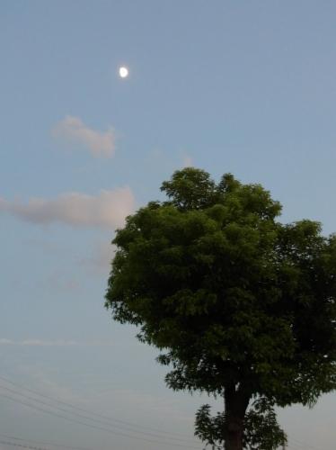 Moon 2010_09_17-02.jpg