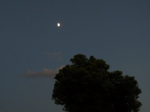 Moon 2010_09_17-03.jpg