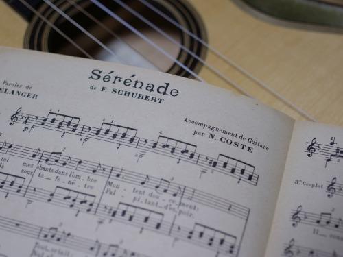 Schubert (guitar) -1.jpg